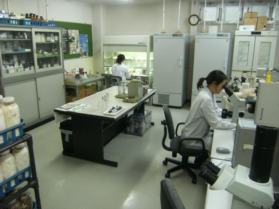 Research / Development